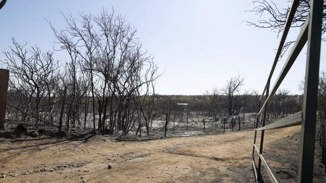 Córdoba: califican de «incalculable» el daño ambiental y económico por los incendios